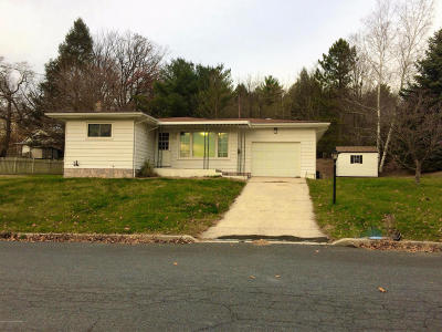 Palmerton Single Family Home For Sale: 251 Ore St