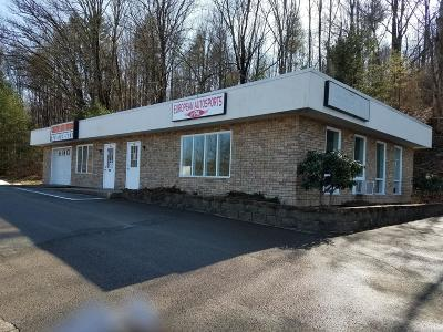 Brodheadsville Commercial For Sale: 2164 Route 209
