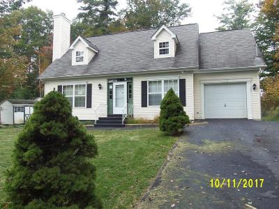 East Stroudsburg Single Family Home For Sale: 1232 Beech Pl