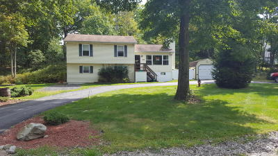 Long Pond Single Family Home For Sale: 119 Hazelnut Ct