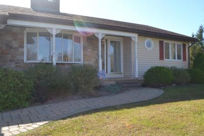 Sciota Single Family Home For Sale: 196 Mary Ann Ter