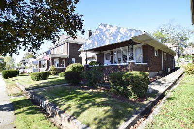 Palmerton Single Family Home For Sale: 127 Franklin Ave