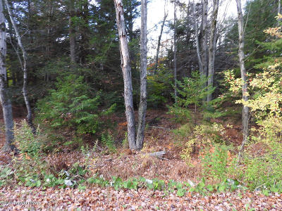 Blakeslee Residential Lots & Land For Sale