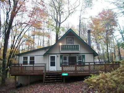 Pocono Lake Single Family Home For Sale: 384 Owassa Dr