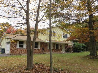 Tannersville Single Family Home For Sale: 164 Twin Oak Terrace