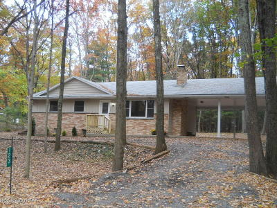 Kunkletown Single Family Home For Sale: 123 Dogwood Ln