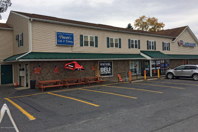 Tannersville Commercial For Sale: 2885 Rt 611, Ste 2