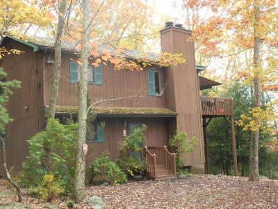 Canadensis Single Family Home For Sale: 158 Forest Dr