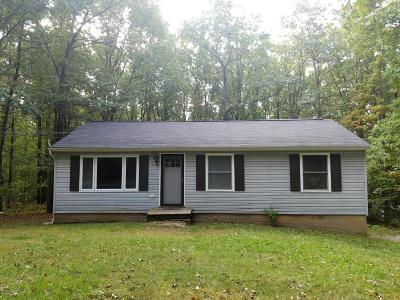 Effort Single Family Home For Sale: 1416 Silver Maple Rd