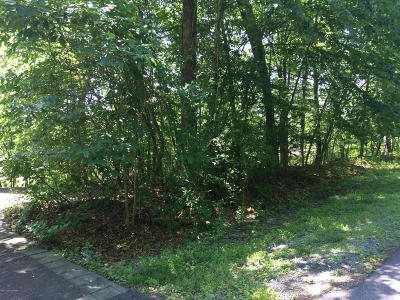 Fairway Villas, Northslope I, Northslope Ii, Northslope Iii, Oakdale At Shawnee Valley, Shawnee Valley, Shawnee Village, Sunrise Village Residential Lots & Land For Sale: Lr 461 Lr 461 Hollow