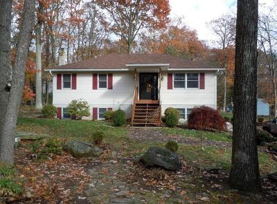 Bartonsville Single Family Home For Sale: 1136 Mattioli Rd