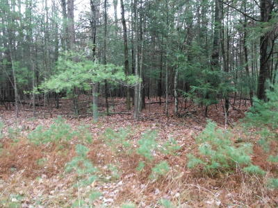 Saylorsburg Residential Lots & Land For Sale: Pine St