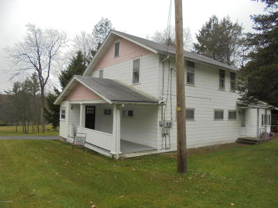 Jim Thorpe Multi Family Home For Sale: 1729 State Route 903