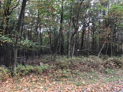 Blakeslee Residential Lots & Land For Sale: 84 Crest View Rd