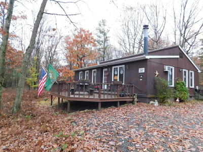 Jim Thorpe Single Family Home For Sale: 5 Berry Ln