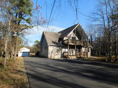 Towamensing Trails Single Family Home For Sale: 183 Lindbergh Cir