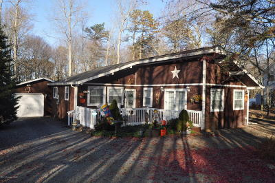 Towamensing Trails Single Family Home For Sale: 81 Masters Trl