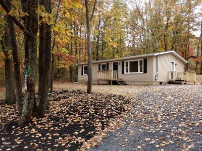 Kunkletown Single Family Home For Sale: 166 Poplar Ln
