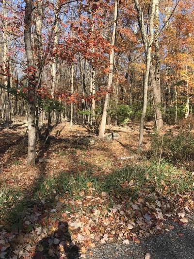 East Stroudsburg Residential Lots & Land For Sale: Metzgar Road