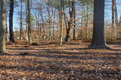 Pocono Lake PA Residential Lots & Land For Sale: $17,800