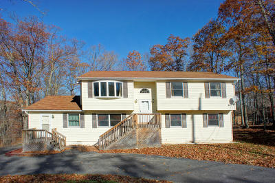 Bushkill PA Single Family Home For Sale: $174,800