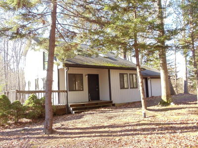 Lake Harmony Single Family Home For Sale: 236 Moseywood Rd