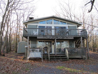 Lake Harmony Single Family Home For Sale: 79 Skye Dr