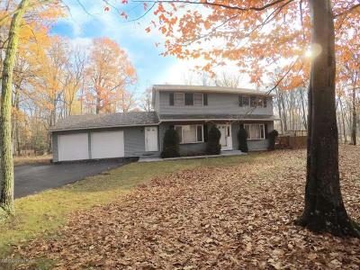 East Stroudsburg Single Family Home For Sale: 50 Dancing Ridge Rd