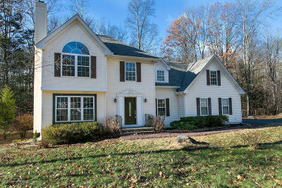 East Stroudsburg Single Family Home For Sale: 194 White Pine Trail