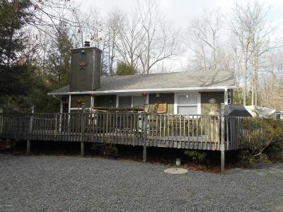 Jim Thorpe Single Family Home For Sale: 48 Delaware Dr