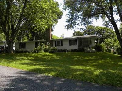 Stroudsburg Single Family Home For Sale: 228 Baabe Ct