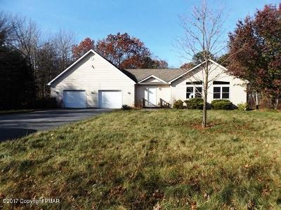 Jim Thorpe Single Family Home For Sale: 96 Cold Spring Dr
