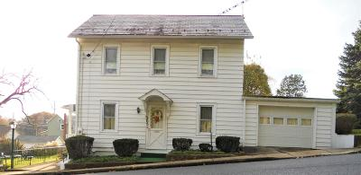 Lehigh County, Northampton County Single Family Home For Sale: 203 Center St