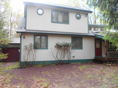 Towamensing Trails Single Family Home For Sale: 124 Spencer Lane