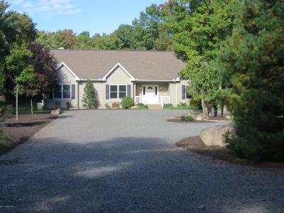 Jim Thorpe Single Family Home For Sale: 33 Bear Ln