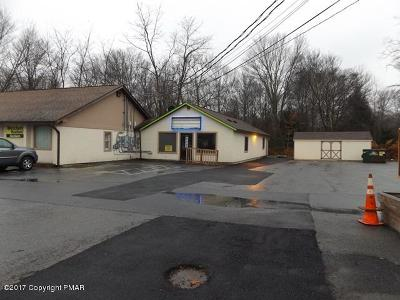 Monroe County Commercial For Sale: 2918 611 Rte