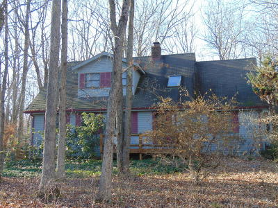 Jim Thorpe Single Family Home For Sale: 17 Dogwood Dr