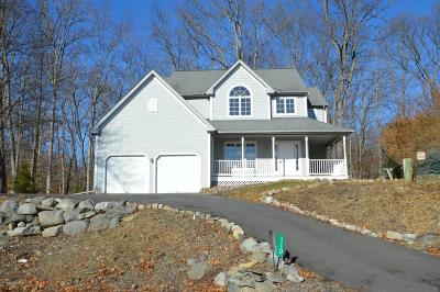 East Stroudsburg Single Family Home For Sale: 110 Epic Ct