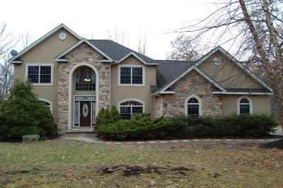 East Stroudsburg Single Family Home For Sale: 6319 Summit Dr