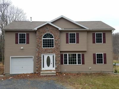 East Stroudsburg Single Family Home For Sale: 551 Highland Drive