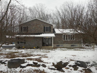 East Stroudsburg Single Family Home For Sale: 140 Sundew Dr