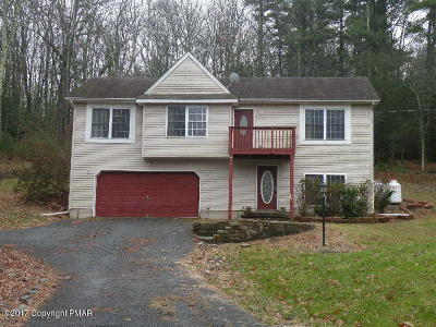 Stroudsburg Single Family Home For Sale: 658 Bartonsville Woods Rd