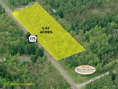 Blakeslee Commercial For Sale: Route 115