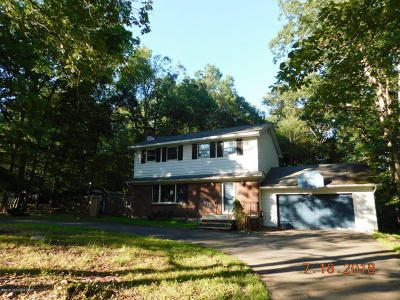 East Stroudsburg Single Family Home For Sale: 297 Remington Rd