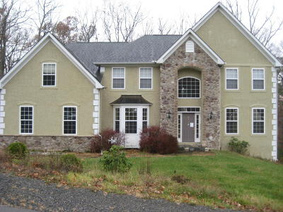 East Stroudsburg Single Family Home For Sale: 3119 Hollow Dr