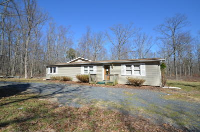 East Stroudsburg Single Family Home For Sale: 1614 Marshalls Crk