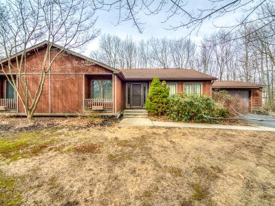 Mount Pocono Single Family Home For Sale: 17 Stonegate Ct