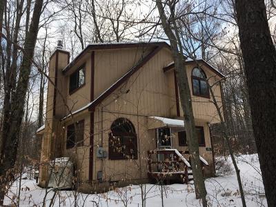 Pocono Lake Single Family Home For Sale: 456 Maxatawny Dr.