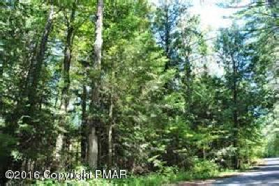 Mount Pocono Residential Lots & Land For Sale: 150 Burton Rd