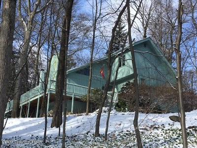 Tannersville Single Family Home For Sale: 3213 Birch Hill Drive